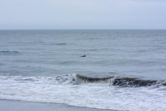 200705ビーチパーク4013.JPG