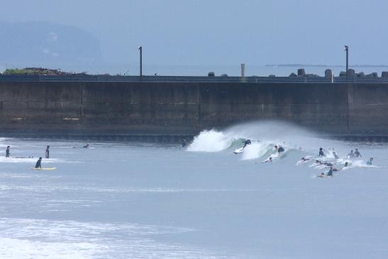 200712ハナミズ002.JPG